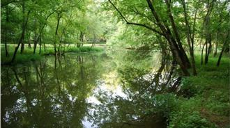 Bledsoe Creek State Park